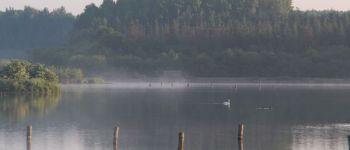 Visite animée - Découverte des oiseaux d\eau de l\étang de Careil Iffendic