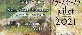 Stage d\été en Brocéliande : Musique, contes et danses bretonnes Monterfil