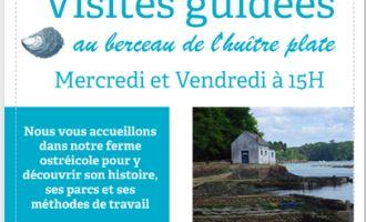 Visite guidée des Huîtrières du Château de Bélon