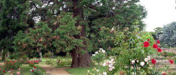 Parc et Roseraie de Ty Coat