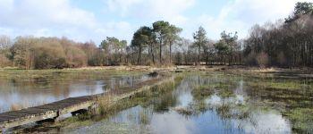 Le Marais de Magoar-Pen Vern