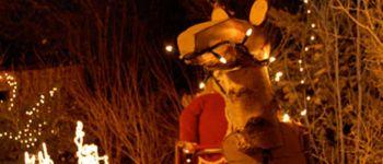 Marché de Noël à Ambon AMBON