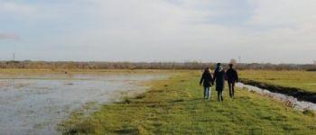 « Estrans » - Débord de Loire Couëron