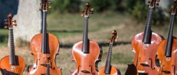 Les Basses Réunies, La Nascita del Violoncello Nantes