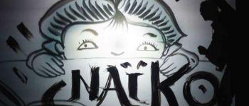 Naïkö - Arts numériques Tréguier