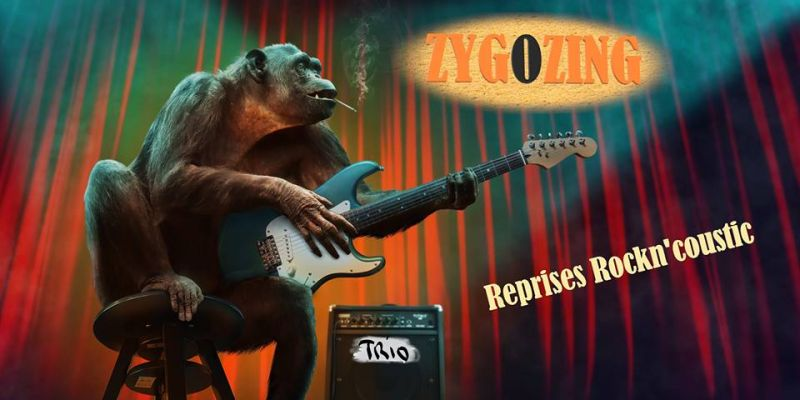 Concert - Zygozing