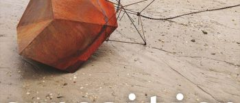 « Dépaysage » Installation, volume et vidéo - Antropocène Brest
