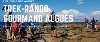 Randonnée gourmande autour des algues concarneau Concarneau