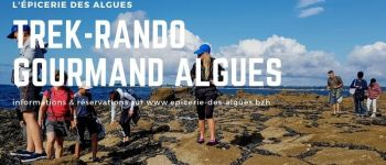 Trek-rando gourmand autour des algues mousterlin Mousterlin fouesnant