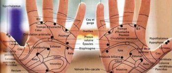 Atelier de réflexologie palmaire : détoxifier l\organisme Nantes