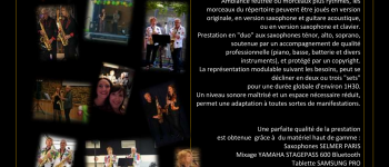 Ansaxony concert et animation musicale au saxophone Lorient
