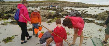 Sortie : pêche à pied découverte Saint-pabu