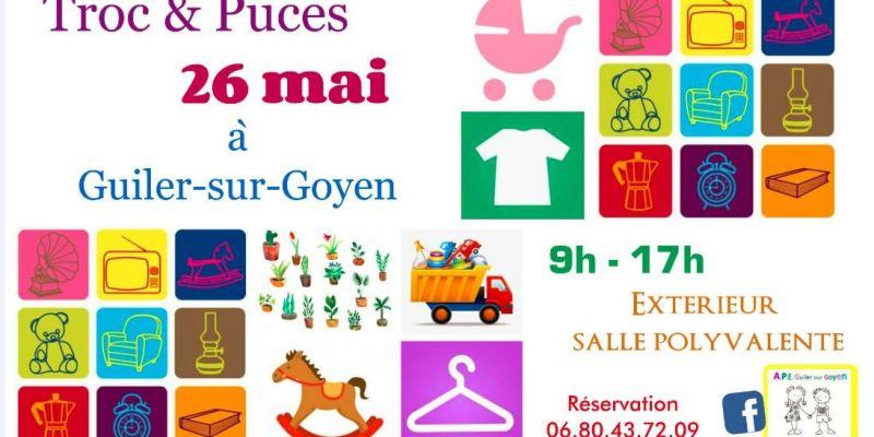 Troc & Puces Guiler sur Goyen