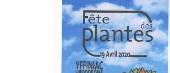 fête des plantes 9ème édition Yffiniac