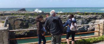 Balade côte sauvage et mégalithes Quiberon