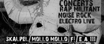 Festival du bruit à bains #001 aka mollo bobby fest#iv Bains sur oust