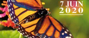 10ème fête des plantes de cardroc ANNULEE Cardroc