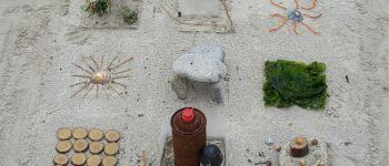Sortie : Les trésors de la plage SAINT-PABU