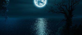 Balade au clair de lune SAINT-PABU