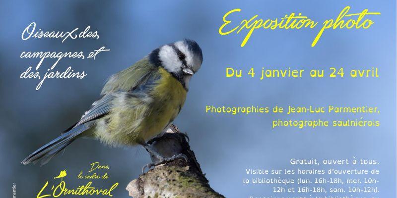 Exposition photo Oiseaux des jardins et des campagnes, Jean-Luc Parmentier